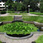 Linnaeus garden in uppsala lily pond
