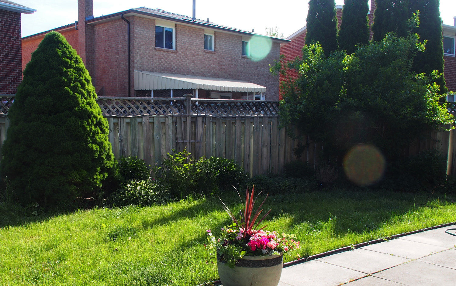 Back Left Corner and Back Garden - Before