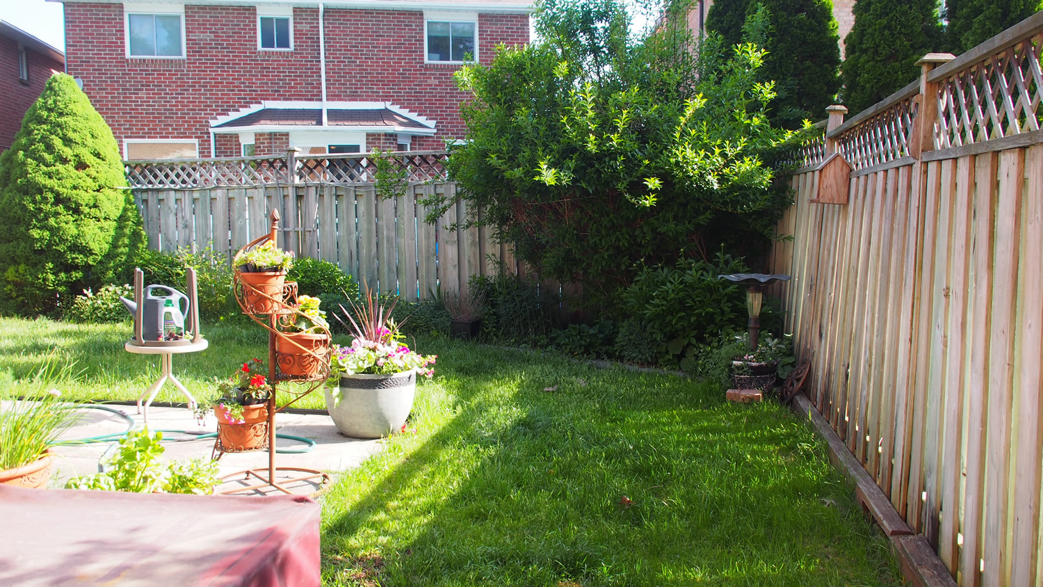 Back Right Corner and Side Garden - Before