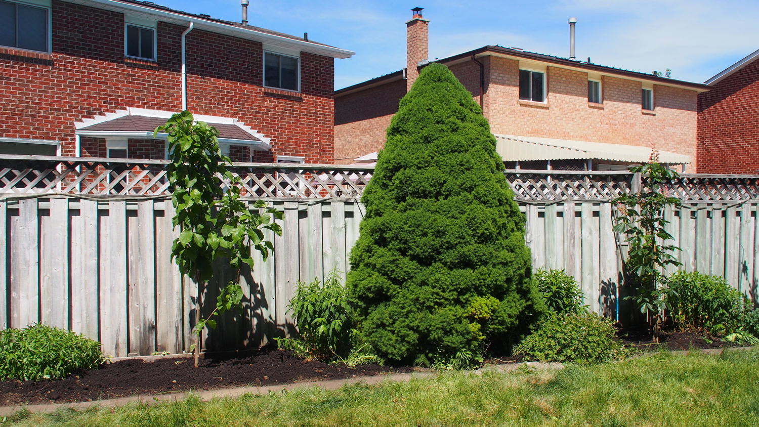 Back Right Garden - After