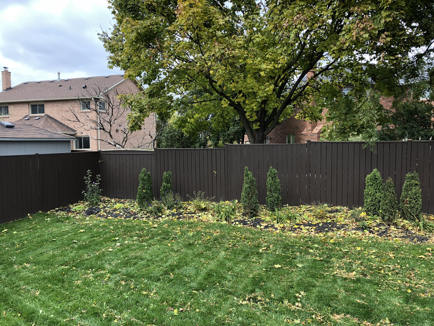 Back Yard After with Cedar Groupings and Mixed Perennials