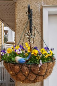 Simple Spring Hanging Basket